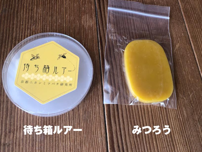 福山市 養蜂